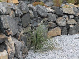 Alpenstein Trockenmauer Ansicht