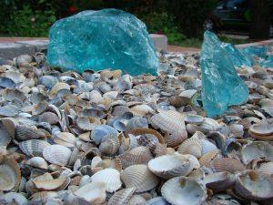 Muscheln und Glas