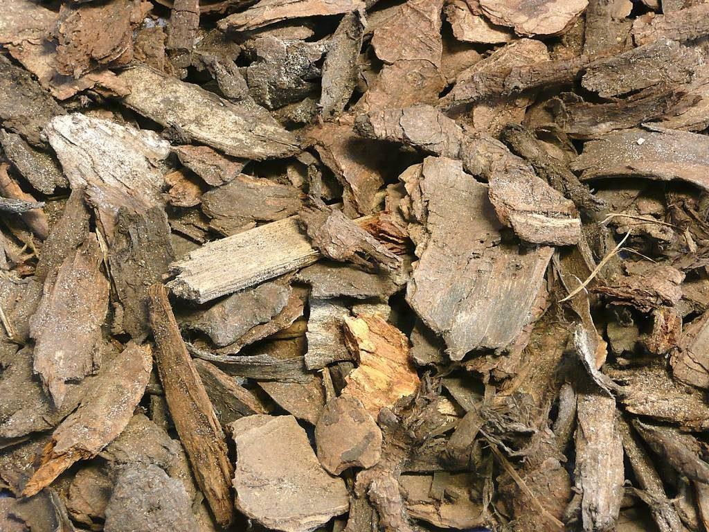 pinienrinde classic 20 40 mm steinakzente