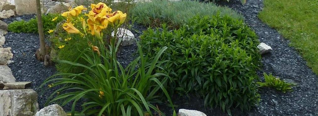 Pflanzbeet mit Schiefermulch