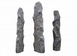 Fossil Säulen-Sankt Ingbert