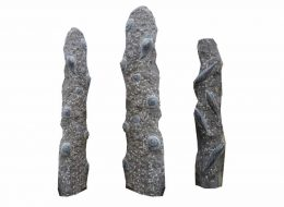 Fossil Säulen-Bayern